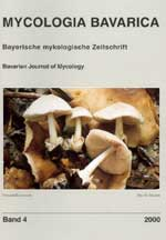 MYCOLOGIA BAVARICA Band 4