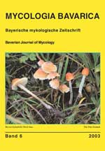 MYCOLOGIA BAVARICA Band 6